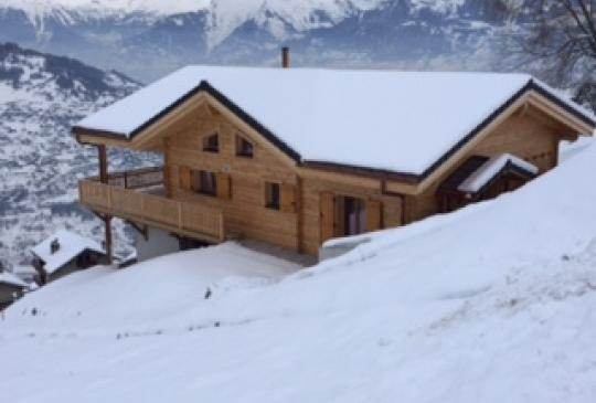 chalets style Traditionnel